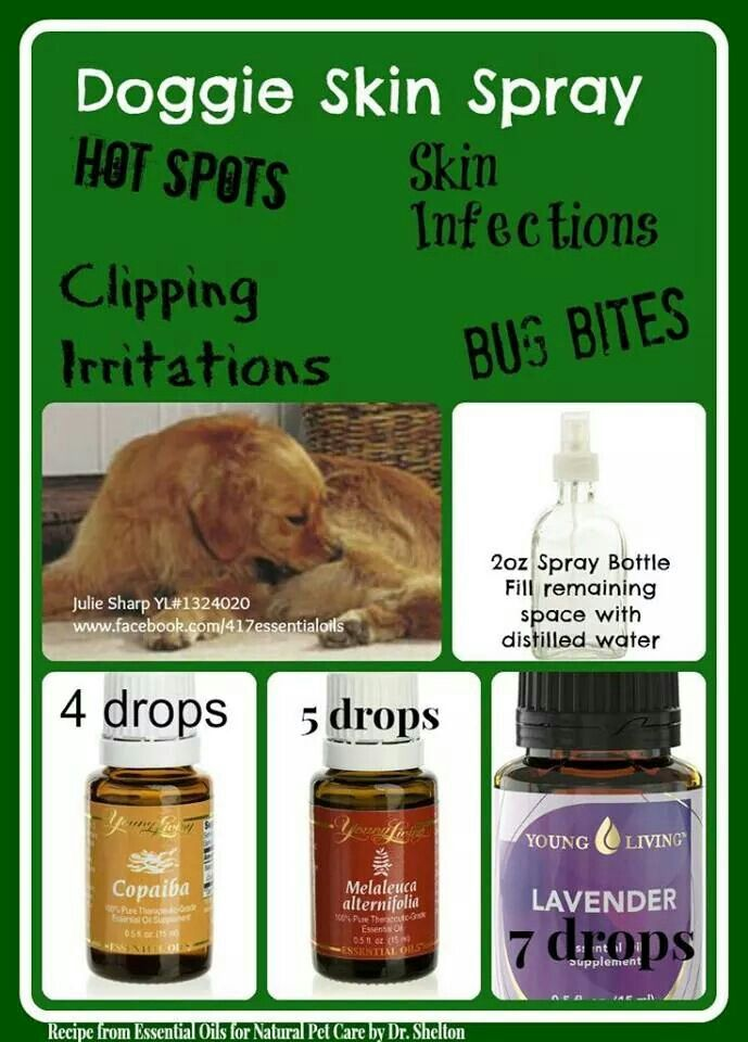Pin By Bickimer Homes On Model Homes: Essential Oils Dogs, Oils For
