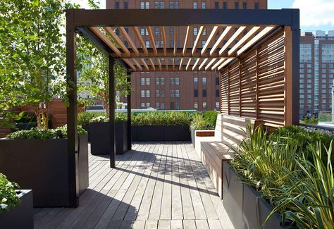 Design & Installation | Plant Specialists
