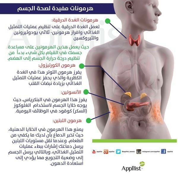 Pin By Tulip On معلومه لصحتك Total Ab Workout Health Fitness Nutrition Medical Anatomy