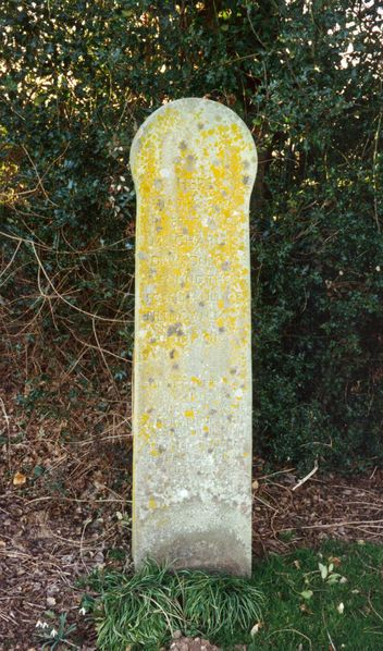 A memorial to Dawson's discovery was set up at Barkham Manor, Piltdown, in 1938.