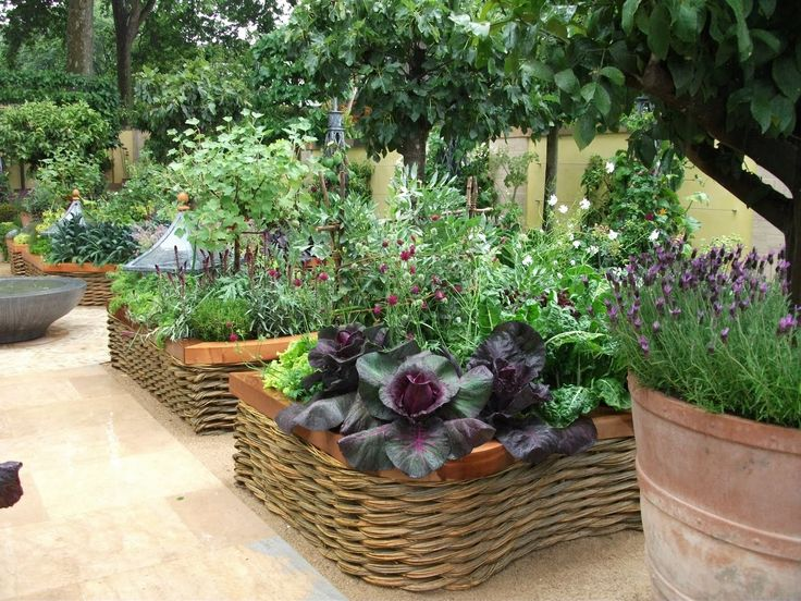 17 best images about sodobni vrtovi in terase on pinterest gardens chelsea flower show and - Decorative vegetable garden ideas stylish green ...