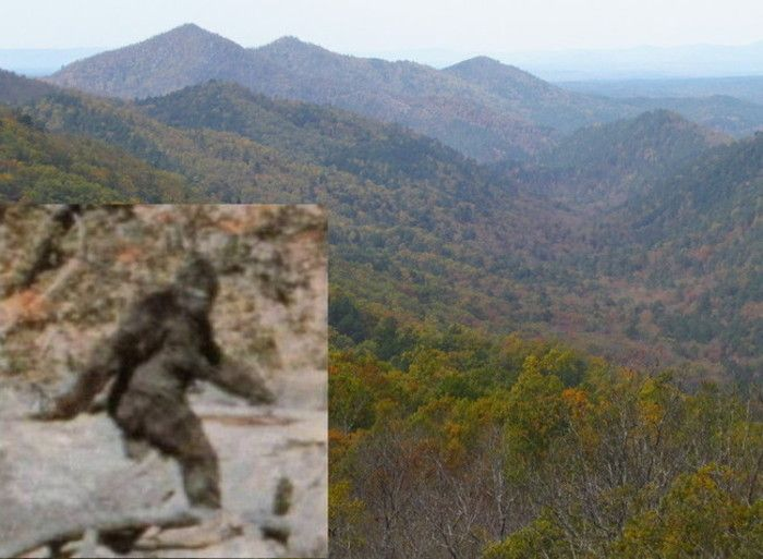 Oklahoma is a highly likely spot for Bigfoot according to expert