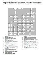 Male reproductive system diagram crossword answers electrical 8 best reproduction images on pinterest nursing schools schools rh pinterest com male reproductive system diagram crossword answer key male reproductive ccuart Images