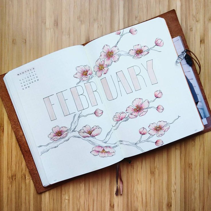 Bullet journal monthly cover page, February cover page, flower drawing. | @bujobylinnea