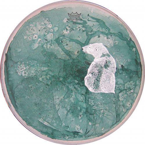 14_pb1: Polar Bears, Vans Drimmelen, Illustrations Drumskin, Drimmelen Paintings, Aimée Vans, Aimé Vans, Paintings Drumskin, Drumskin Paintings, Drums Skins