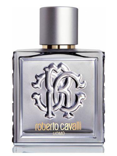 4ceceaf6f31 Roberto Cavalli Uomo Silver Essence Roberto Cavalli para Hombres ...
