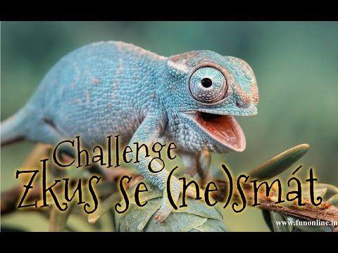 Zkus se nesmát - Challenge - YouTube