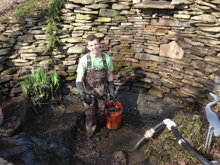 17 best ideas about pond maintenance on pinterest pond for Pond maintenance
