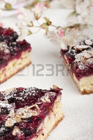 wild berrie dessert
