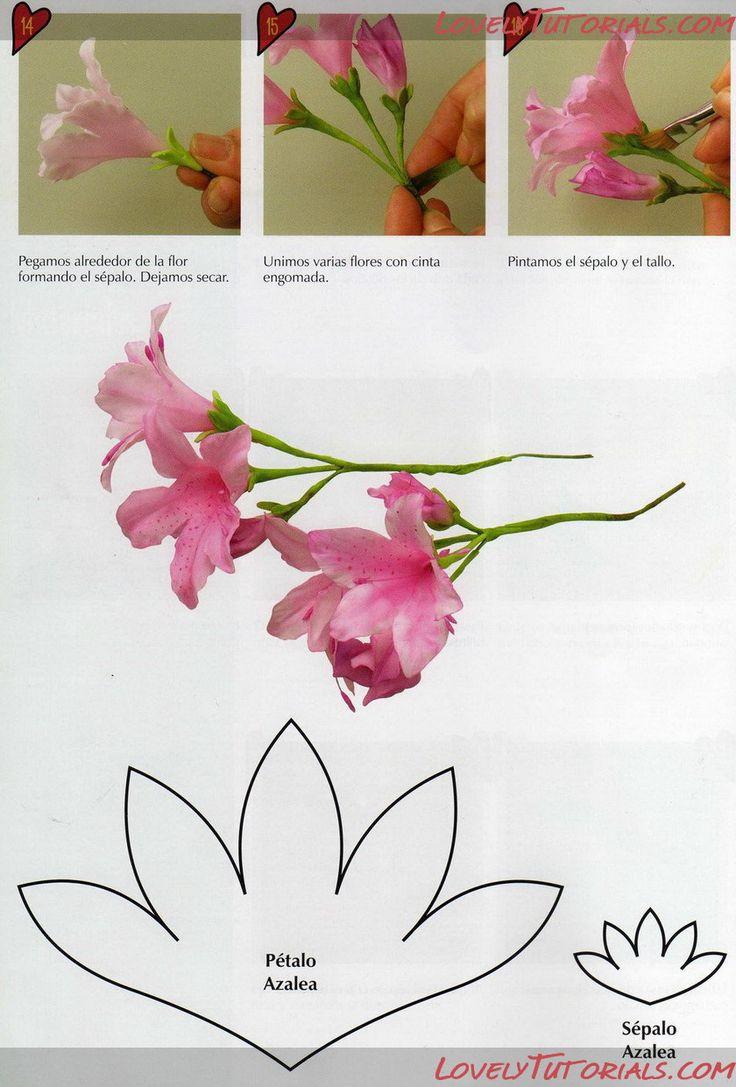 МК лепка Азалия-Gumpaste (fondant, polymer clay) azalea flower making tutorial - Мастер-классы по украшению тортов Cake Decorating Tutorials (How To's) Tortas Paso a Paso