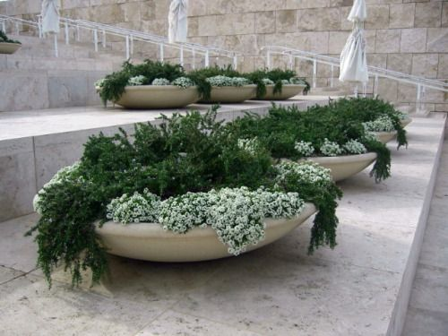 fantastic idea - smaller tubs conceptLANDSCAPE
