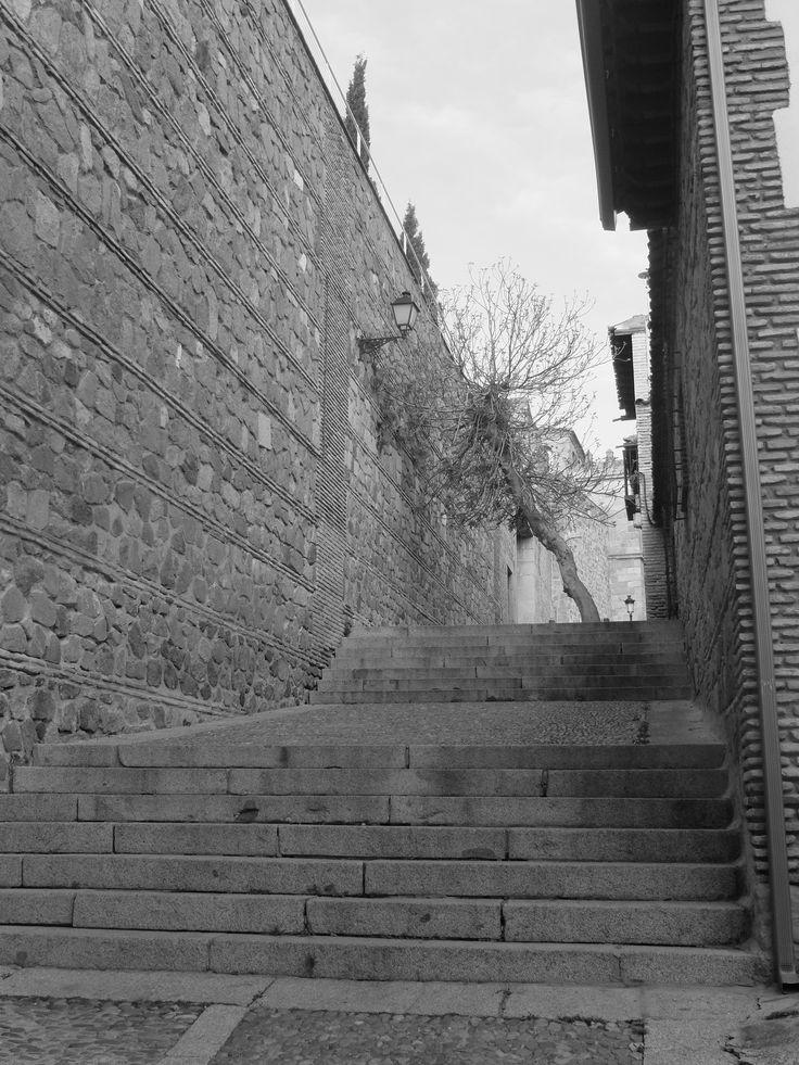 Ronda de muralla