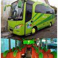 Sewa Bus Jogja Seat 25