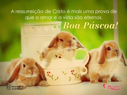 """""""A ressurreição de cristo é mais uma prova de que o amor e a vida são eternos. Boa páscoa!"""" #Pascoa #FelizPascoa"""