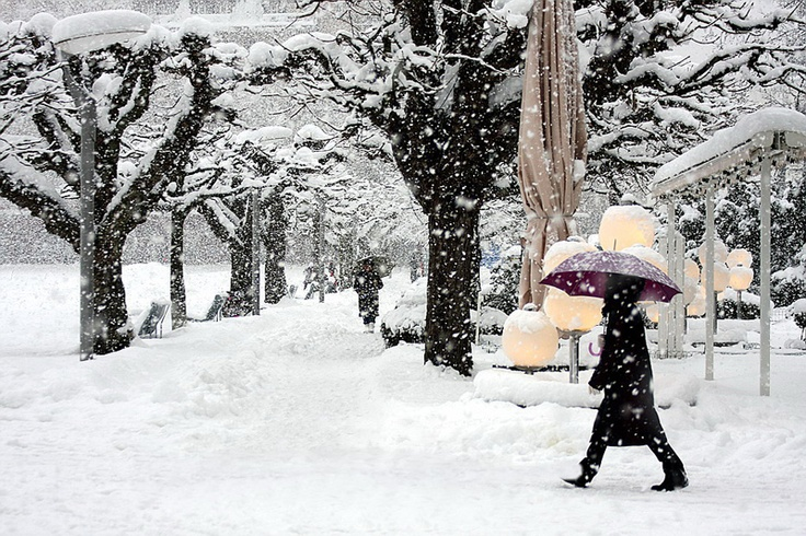 essay on winter season
