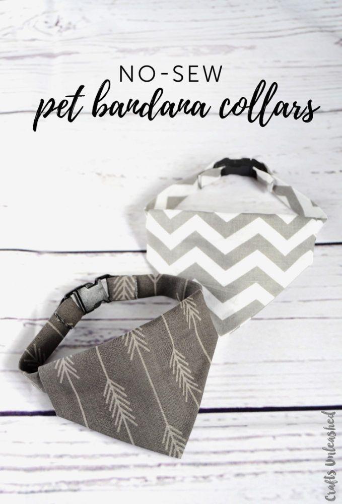 Diy Dog Collar No Sew Bandana Collar Consumer Crafts Panoletas Para Perros Corbatas Para Perros Collares Para Gatos