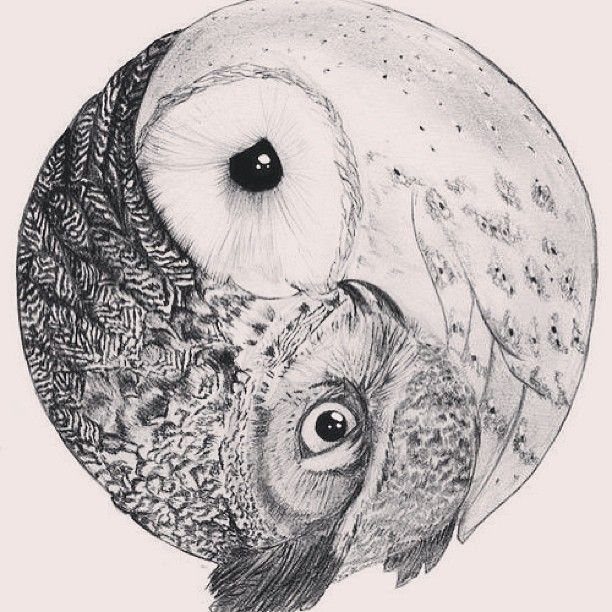 Owl yin and yang OMG this would make a STUNNING TATTOO!!!!! WOW