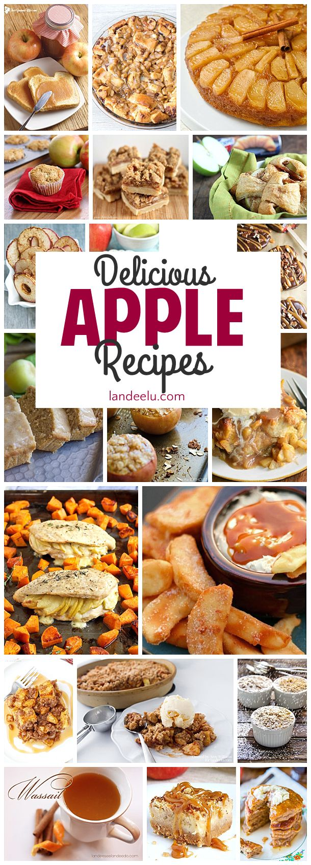 These apple recipes look soooo yummy!  I can't wait to try them!  Perfect for Fall, Winter or anytime in my book!