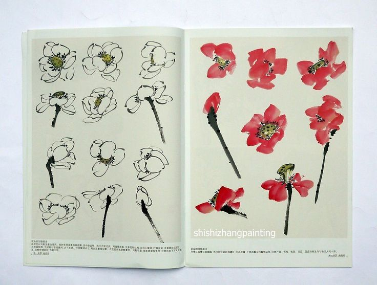 Chinese Painting Book Learn to Paint Lotus Canna Flower Brush Ink Asian Art | eBay