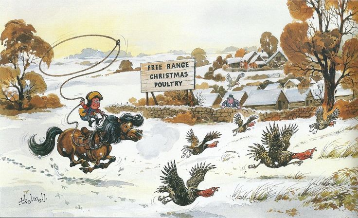 Thelwell ~ Turkey Rodeo
