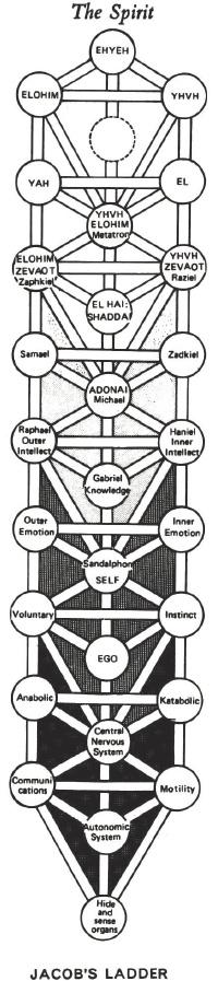book Meditaţia creatoare şi conştiinta multidimensională