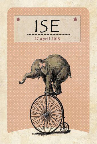 Geboortekaartje Ise - voorkant - Pimpelpluis - https://www.facebook.com/pages/Pimpelpluis/188675421305550?ref=hl (# vintage - olifant - dieren - cirkus -  fiets - origineel)