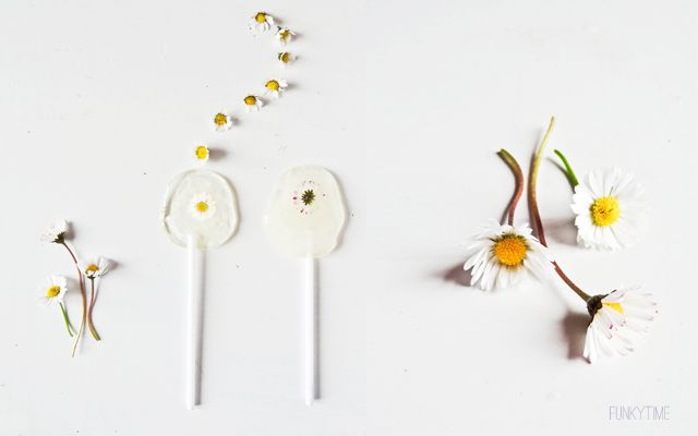 Lollipops with real daisies. Learn how.Daisies Lollipops, Flower Lollipops, Make Flower, Edible Flower, Lollipops Flower, Diy Daisies, Sweets Daisies, Flower Daisies, Lollipops Recipe