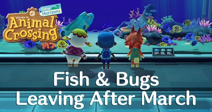 Every animal crossing new horizons fish bug leaving