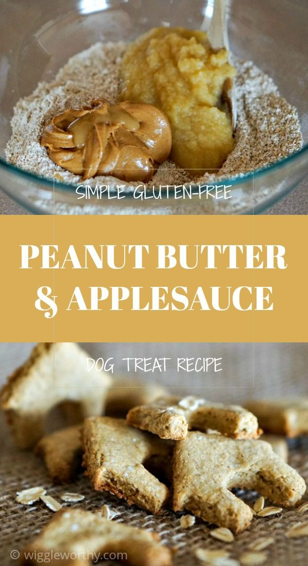 Peanut Butter Applesauce And Oats Recipe Dog Biscuit Recipes