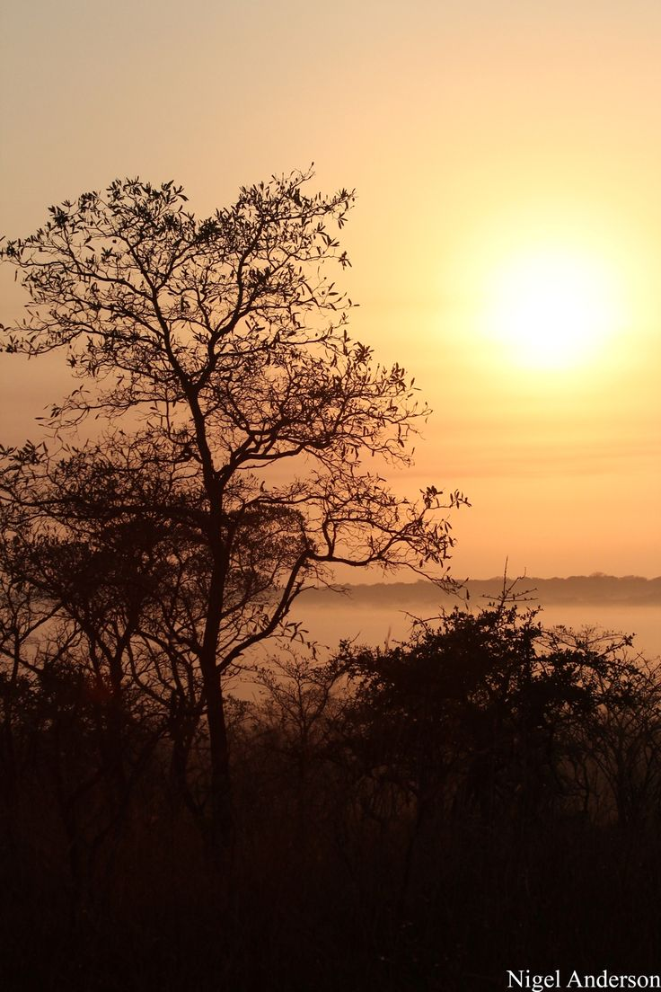 Sun rise in the Kruger Park