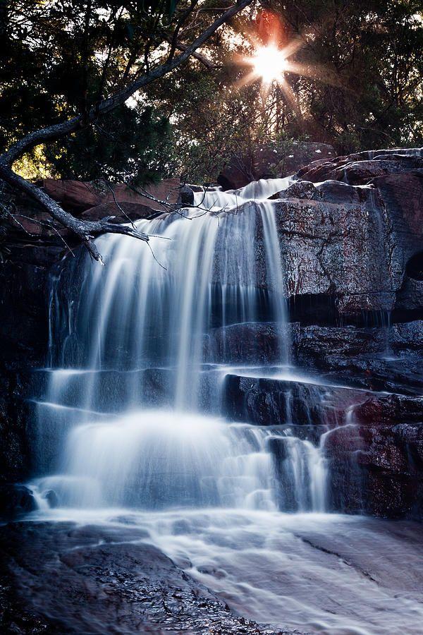 ✮ Royal National Park - Sydney, Australia