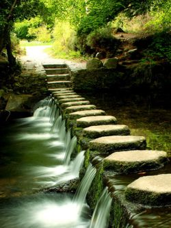 Stepping Stones and waterfalls. #landscape #garden paths
