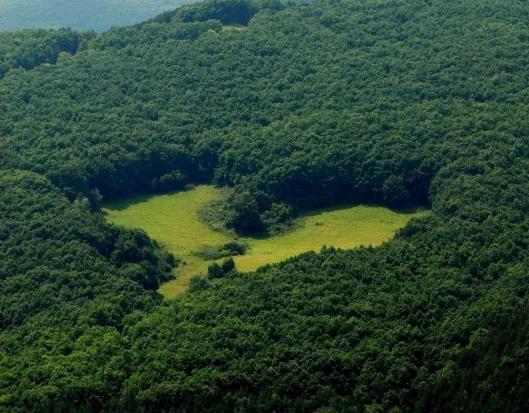 Poiana Inima Alba Apuseni mountains Romania Carpathians