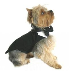Black Dog Tuxedo w/Tails, Bow Tie and Collar