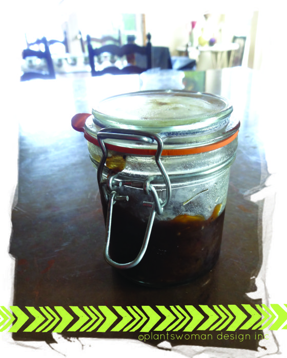 Onion marmalade...  I know, sounds odd right?  Trust us, try it.  Great on burgers and appetizers! www.plantswomandesign.com/landscape_design