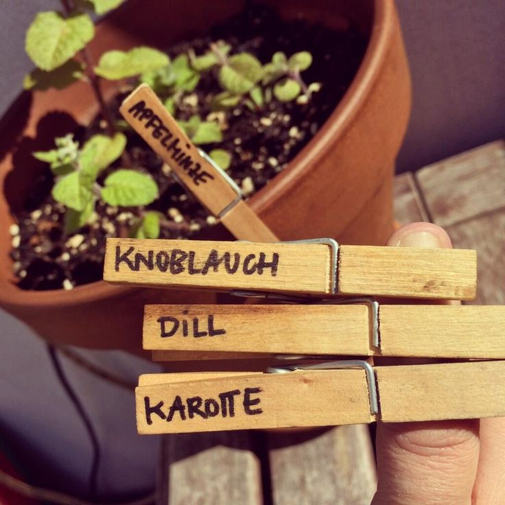 POLARIPOP TUTORIALS / Plant Labeling > > > Clothespin are an easy way to label your plants.  > > >   twitter.com/polaripop - facebook.com/polaripop - www.polaripop.com