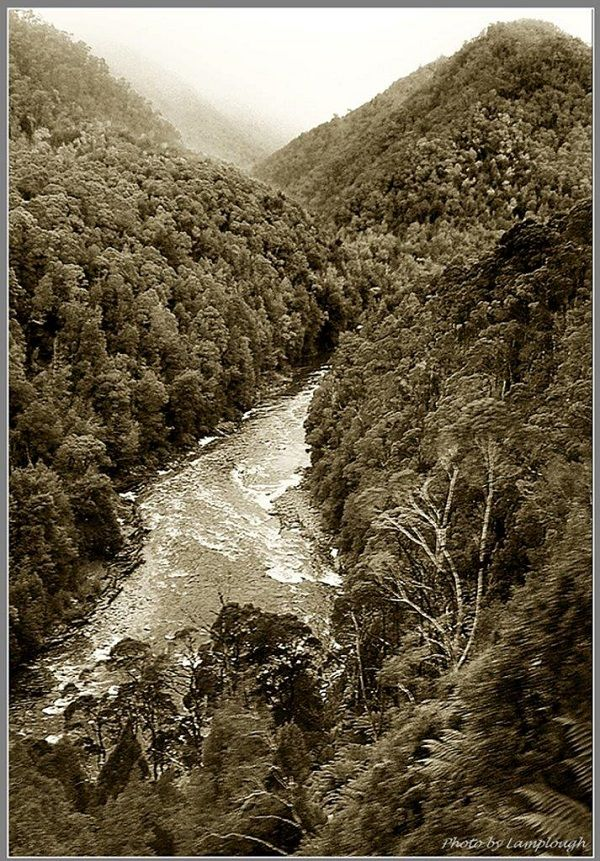 King River, South West #Wilderness #Tasmania: photo by David Lamplough, article for think-tasmania.com