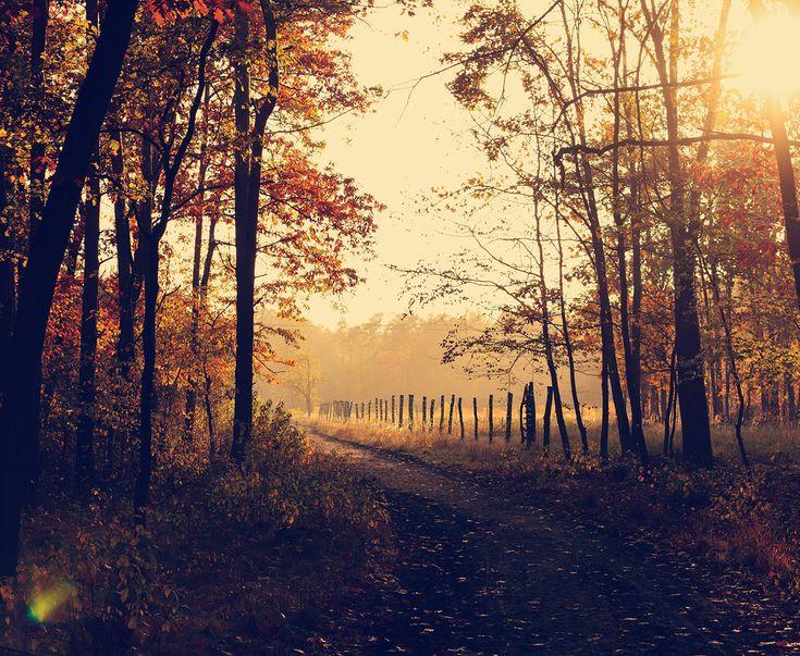 Herbstliche Reiseziele mit dem Wohnmobil in Deutschland