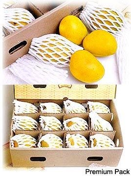 Send delicious mangoes to India from our online store at Tajonline.com. For more information click here: http://www.tajonline.com/gifts-to-india/gifts-FMA03.html