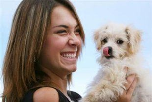 Get a small family dog. What to think about before you get a dog.