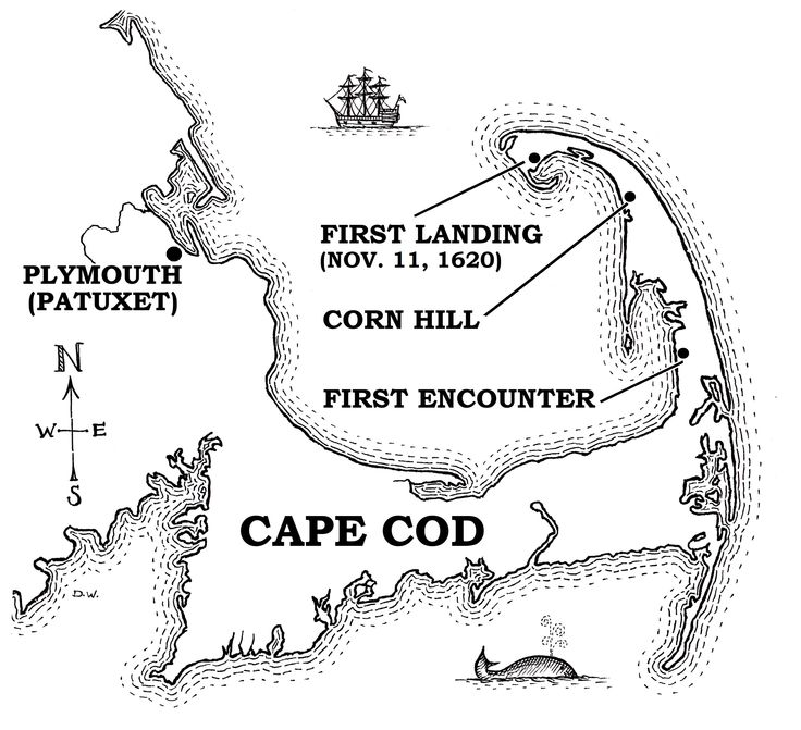Cape Cod Coloring Pages Related Keywords & Suggestions