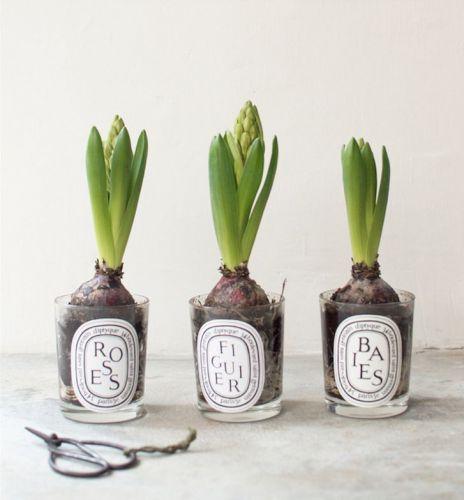 DIY : quand les bougies dyptique deviennent des vases