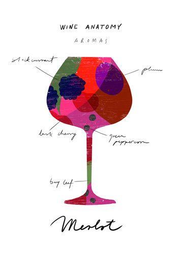 Wine Anatomy: Merlot - Ana Zaja Petrak Prints - Easyart.com