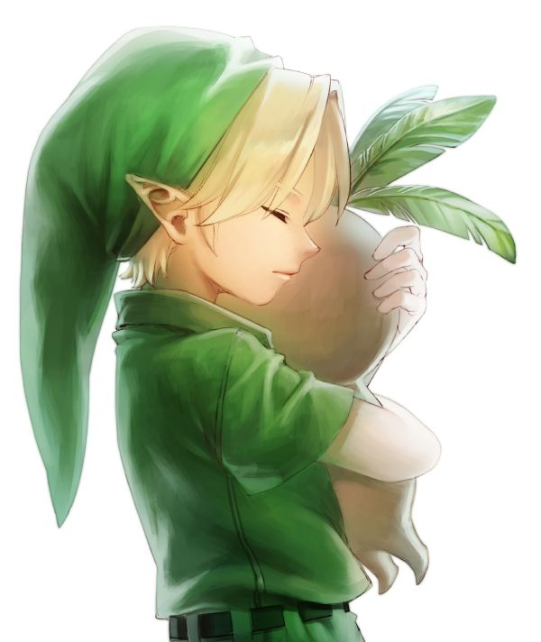 Link and the deku butler's son