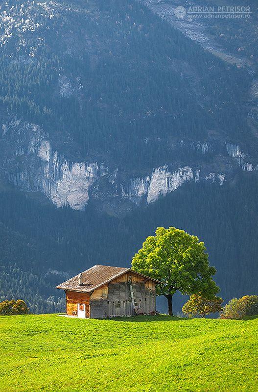 Swiss lands.