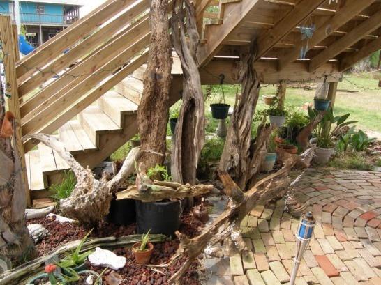 Image Detail For  In Driftwood Sales For Home Garden Aquarium Terrarium  Arts Crafts .