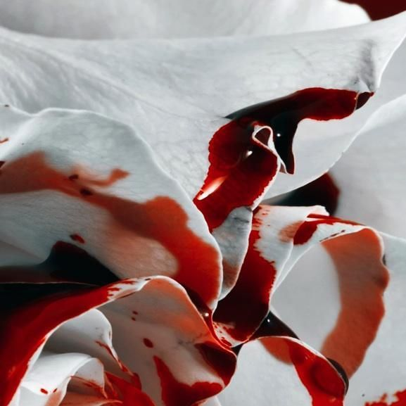 Cómo quitar las manchas de sangre seca en la ropa