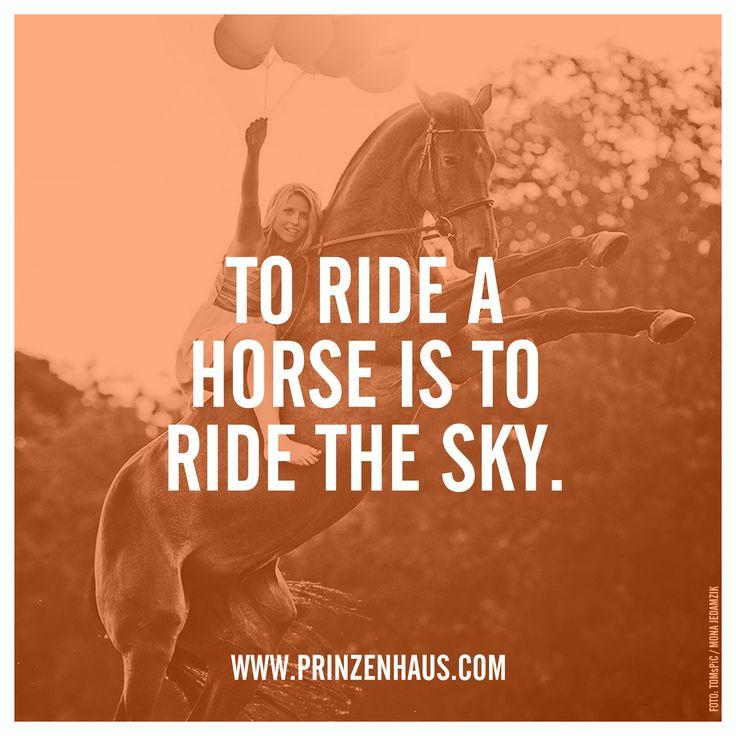 www.prinzenhaus.com TO RIDE A HORSE IT TO RIDE THE SKY.