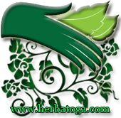 Kesehatan merupakan harta yang paling berharga,karena tanpa kesehatan kita tidak bisa bekerja dan beraktifitas. Arti pentingnya kesehatan akan terasa ketika kita merasakan sakit.  Terkadang kesibukan membuat kita lupa akan pola makan yang kurang baik, gaya hidup, stress, kurang istirahat yang akan menjadi pemicu timbulnya berbagai macam penyakit seperti permasalahan pada darah, diabetes dan lain-lain.  Untuk itu disini kami herbatoga.com hadir membantu mengatasi permasalahan kesehatan…