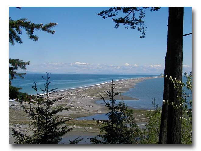 Dungeness Spit, Sequim WA - Yes, the ever so delicious crab is named for this tiny piece of coast :)